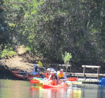 kayac3